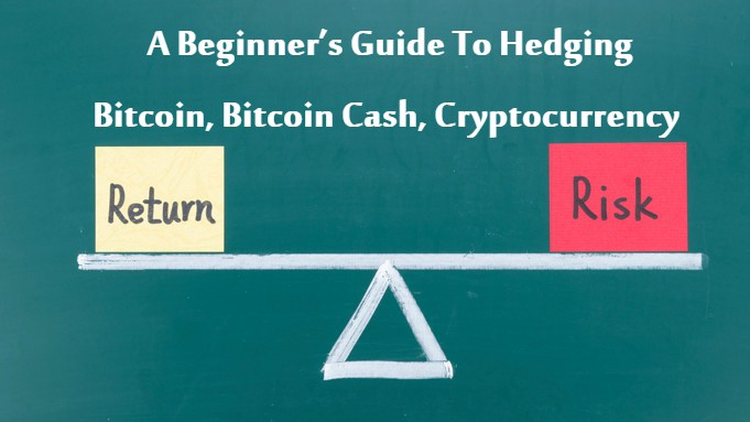 A Beginner's Guide To Hedging — Bitcoin, Bitcoin Cash, Cryptocurrency