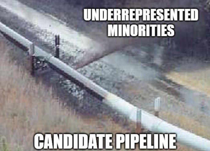 "Ruptured pipeline labeled ""Candidate Pipeline"". Where the oil is spilling out ""Underrepresented Minorities"""