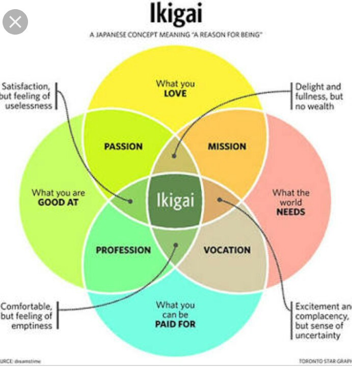 """What does """"The Little Book of Ikigai"""" says?"""