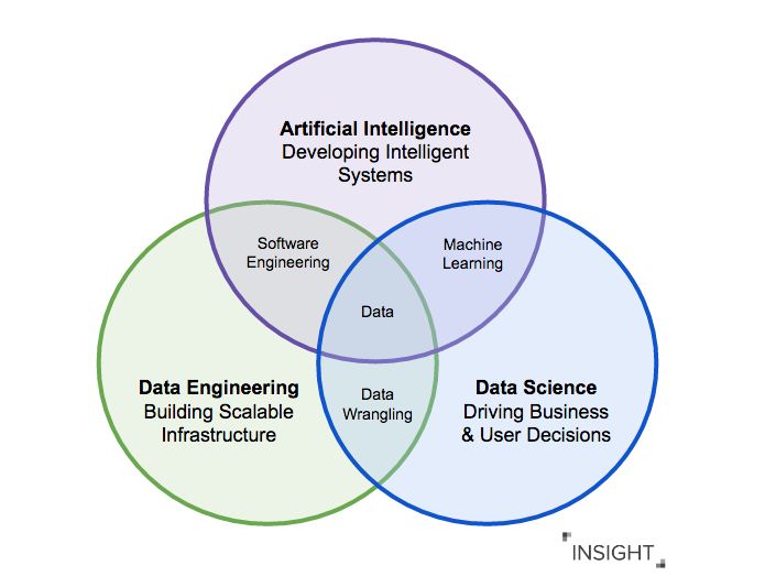 How AI Careers Fit into the Data Landscape - Insight Fellows