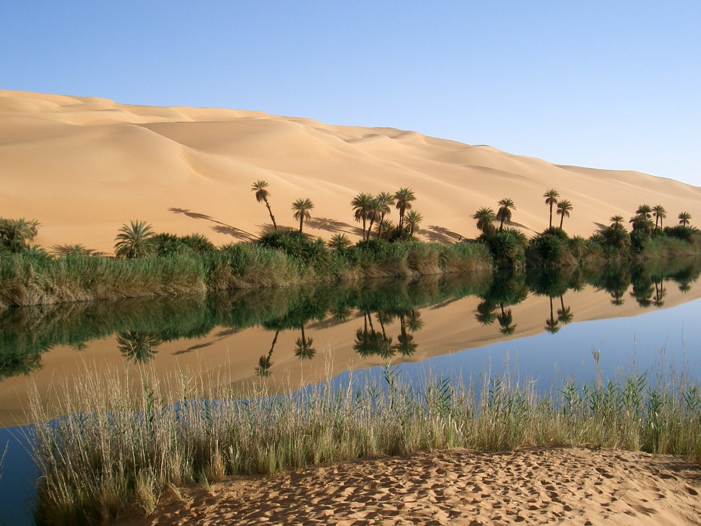 Water in a desert oasis.