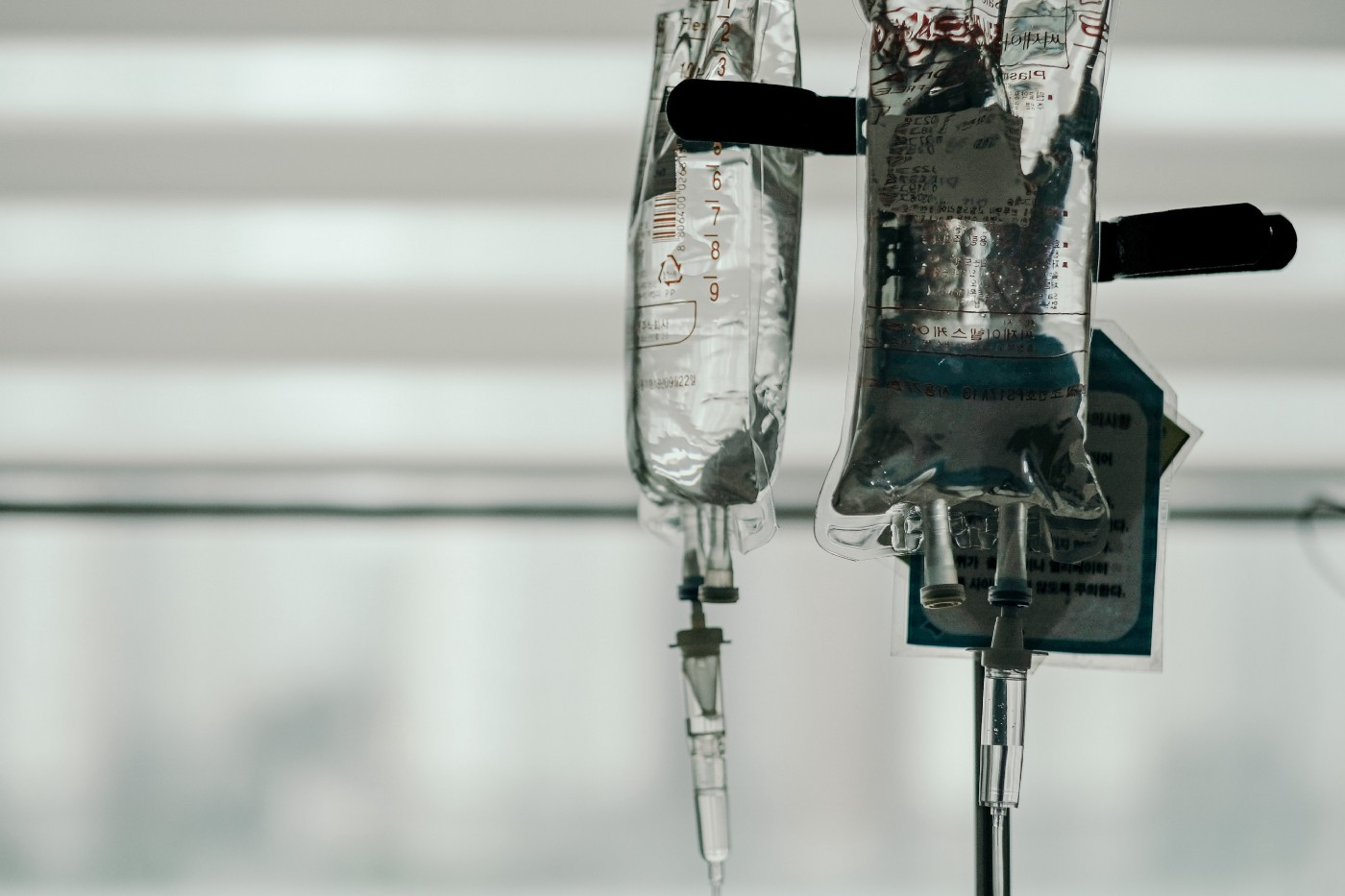IVs hanging cropped in front of a mid-light window.