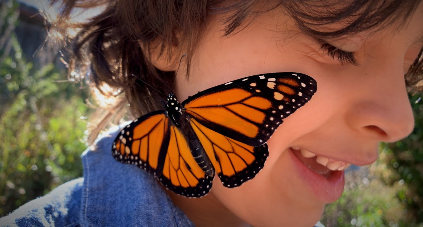 Closeup of a young boy with brown hair, smiling as a monarch butterfly with outstretched wings rests on his cheek.