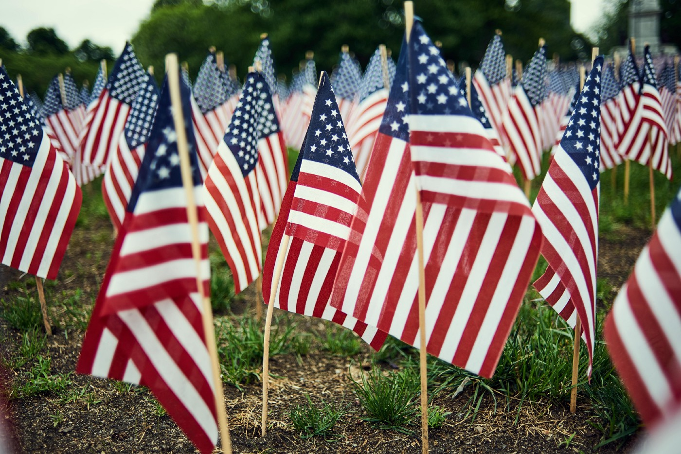 Picture of several flags stuck in ground for Memorial Day, posted on Mickey Markoff article about spirit of Memorial Day.