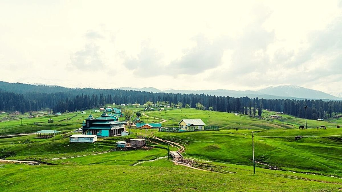 Tourists at ease in Kashmir; safe, serene valley lures travellers