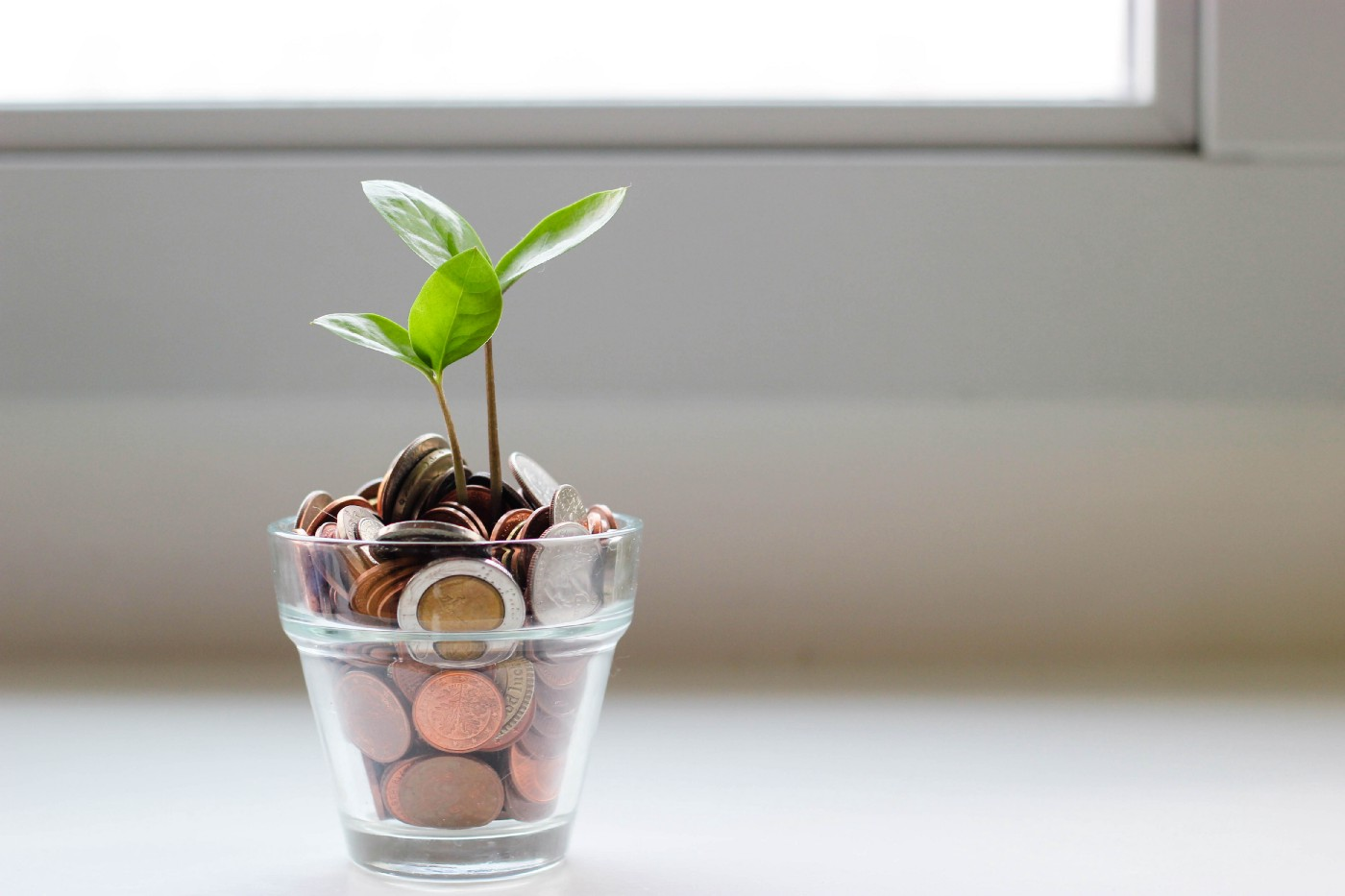 Photo of a planter with coins instead of soil, by Visual Stories || Micheile on Unsplash