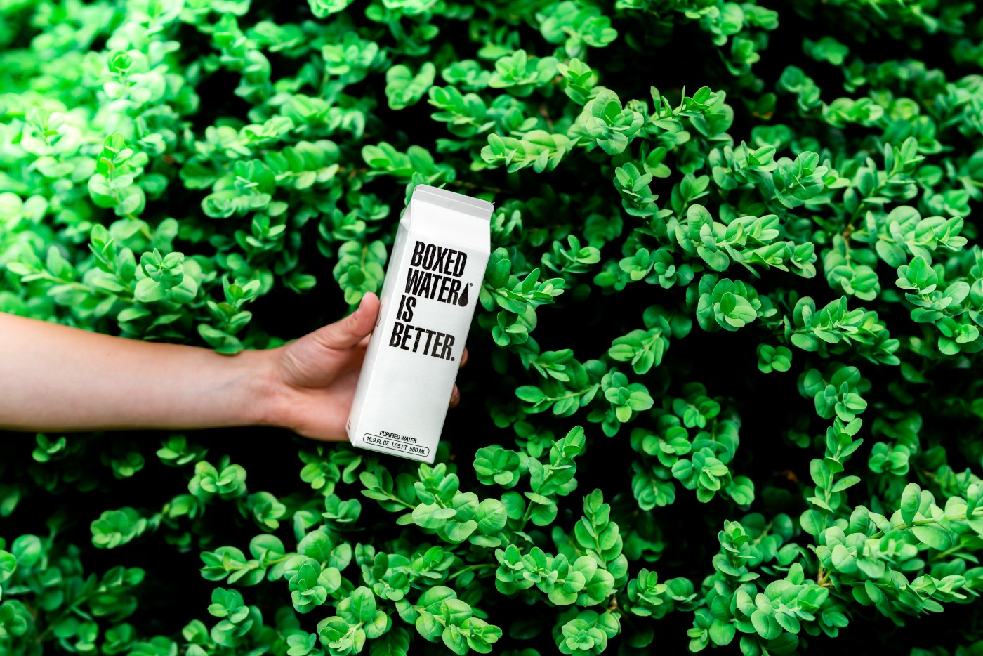 "A person's hand holding a milk carton shaped box in front of a green bush. On the carton it reads: ""Boxed water is better."""