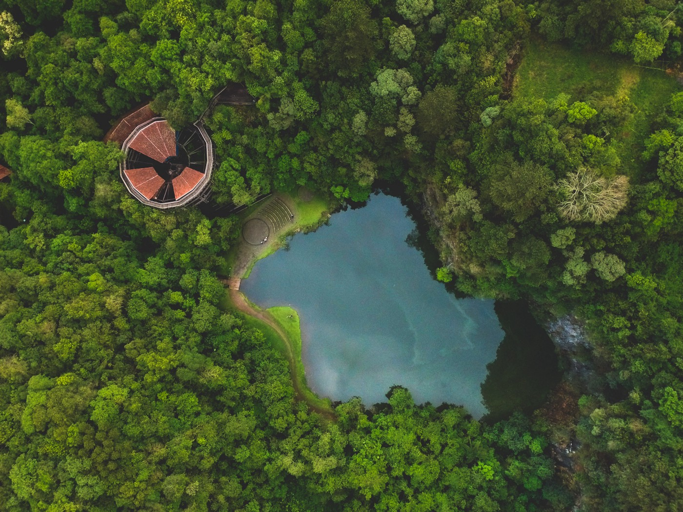 Picture of an abandoned object in the middle of a lush green forest and small lake.