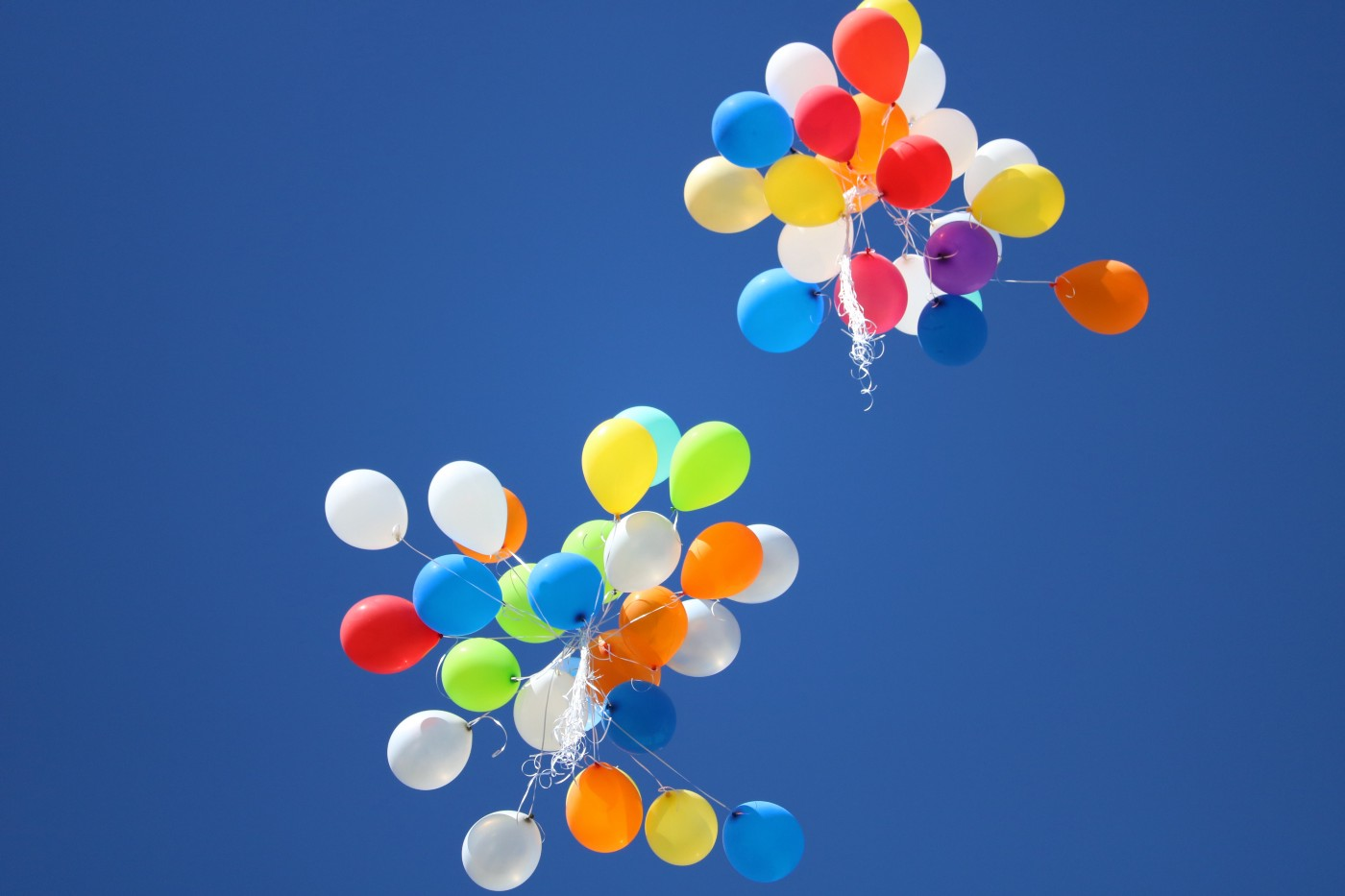 Two bunches of multi-colored balloons released in the sky.