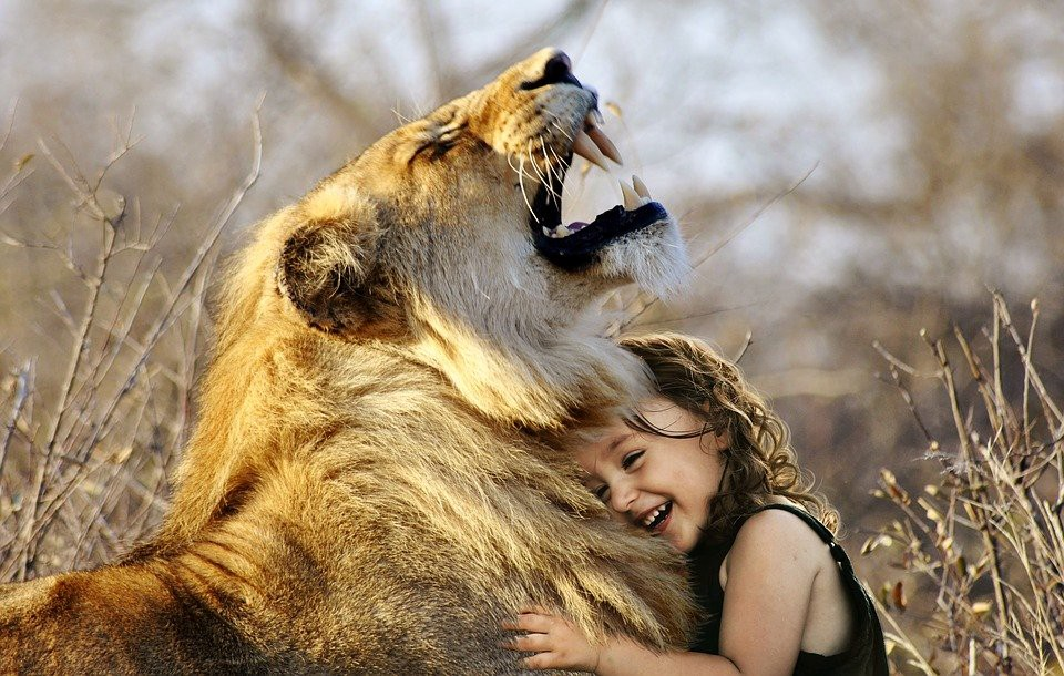 You won't fool this child of a revolution. Shizan Baash. Be a lionness. SarahRichterArt / Pixabay