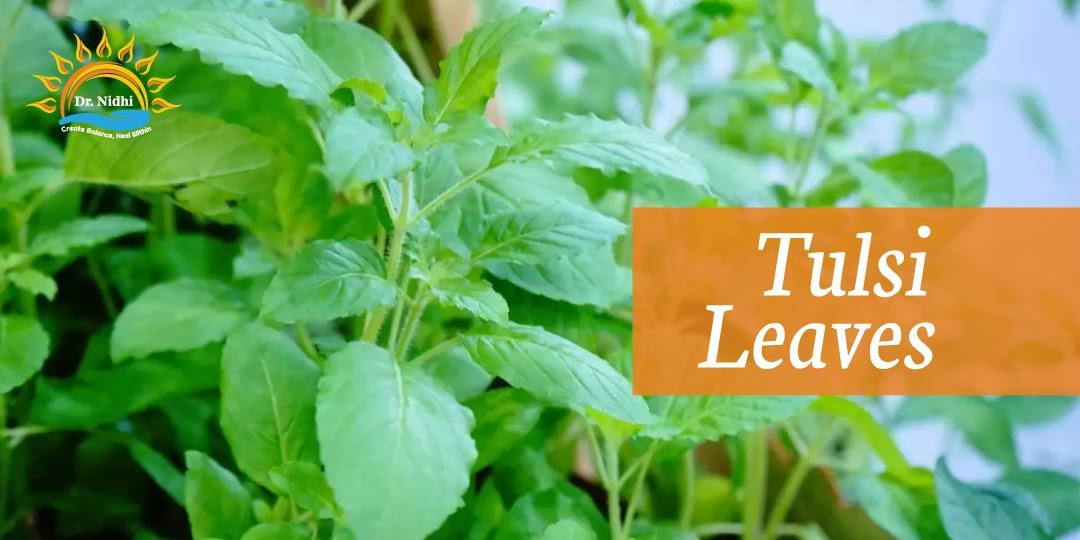 Tulsi Leaves | Natural Remedies for Viral Fever | PHCC | Holistic Healing | Homeopathy | Dr. Nidhi | Natural Remedies |