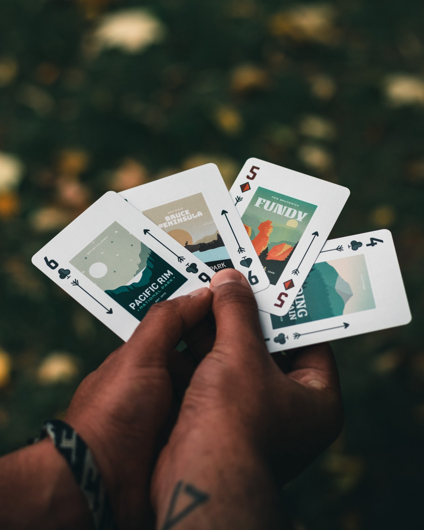 A spread hand of cards