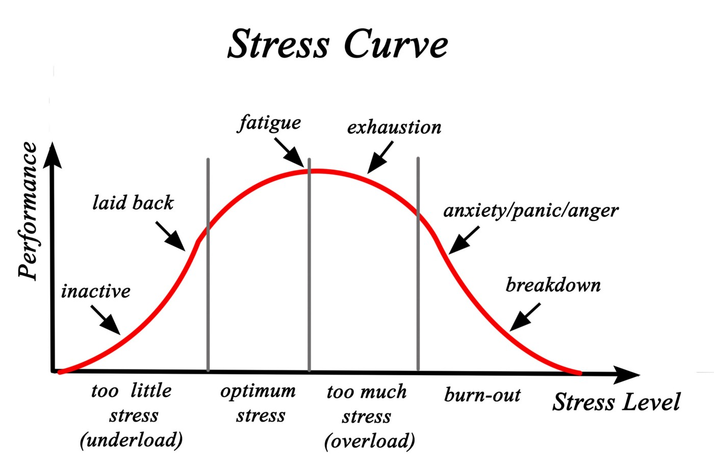 Graph showing the Stress and Performance Curve with different stages randing from inactive, laid back, fatugue, exhaustion, anxiety/panic/anger, and breakdown.