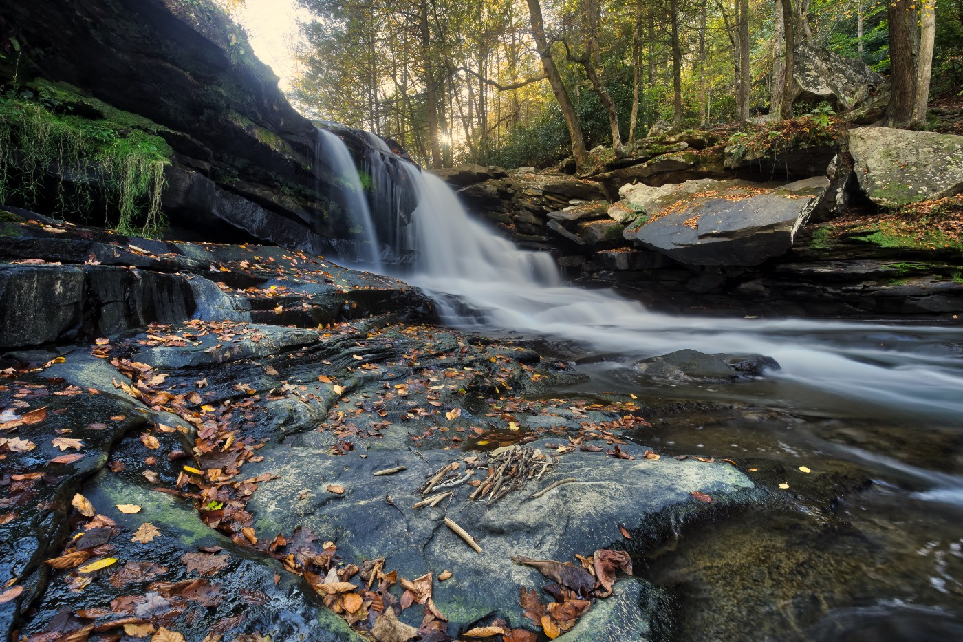 Photo of stream and a small waterfall