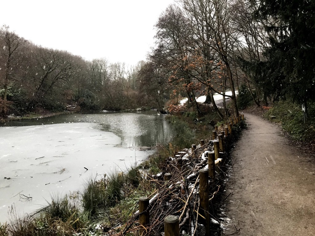 Lake next to footpath in woods. The lake is partially frozen over