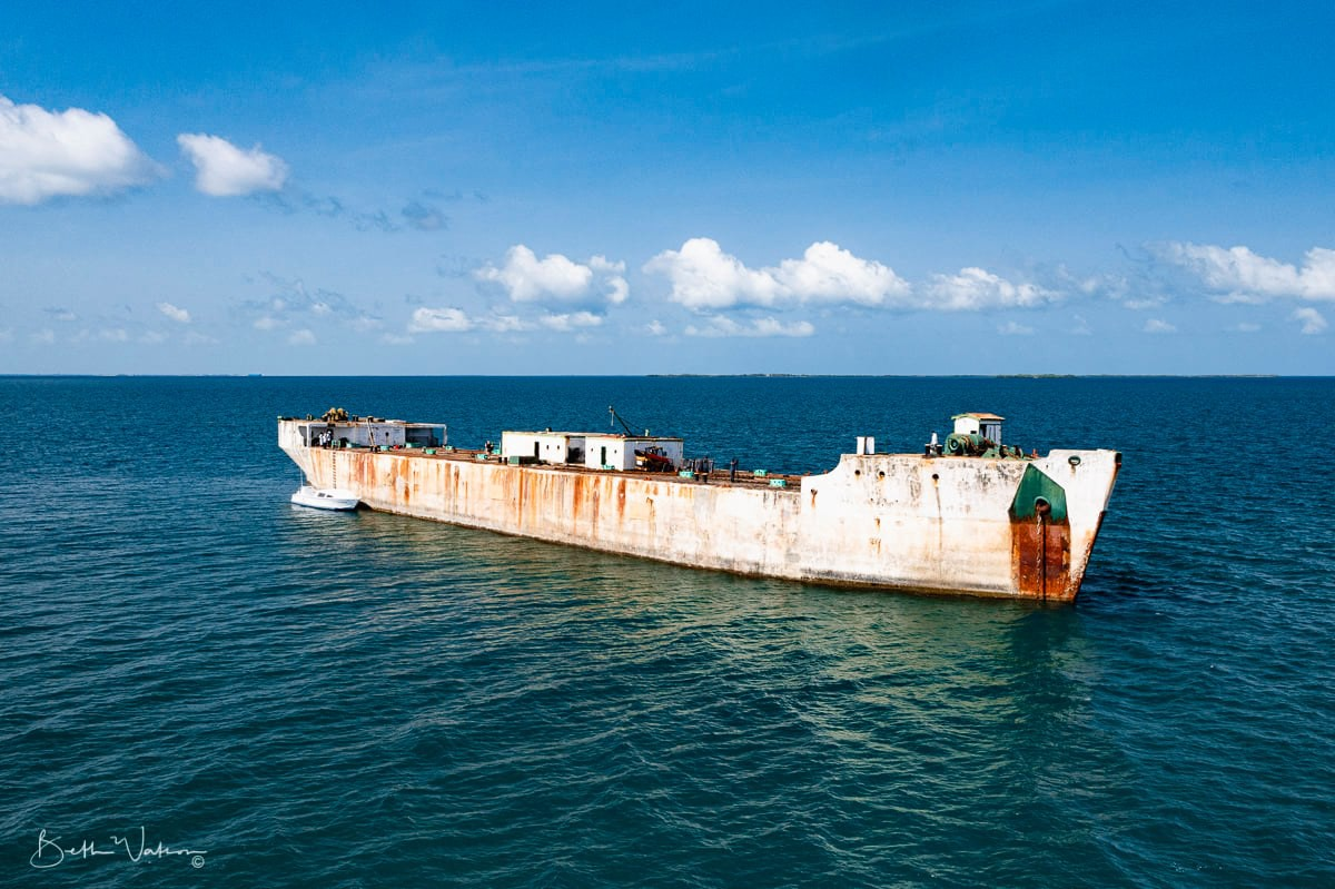 The Wit: Belize's Newest Wreck Dive Destination & First Artificial Reef