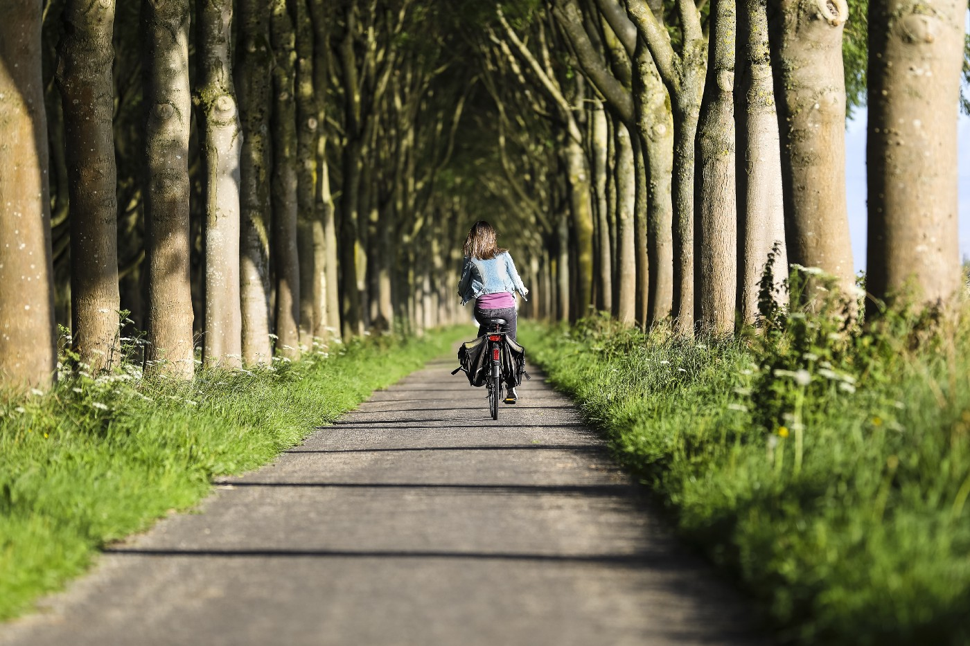 A women going away from the camera with her bike, while peddaling alongside trees.