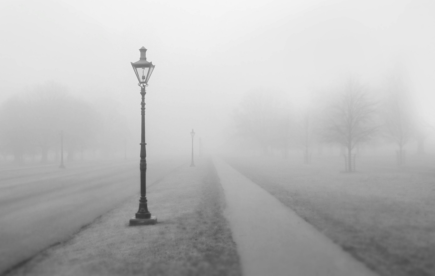 Lamp posts along a trail in the fog.