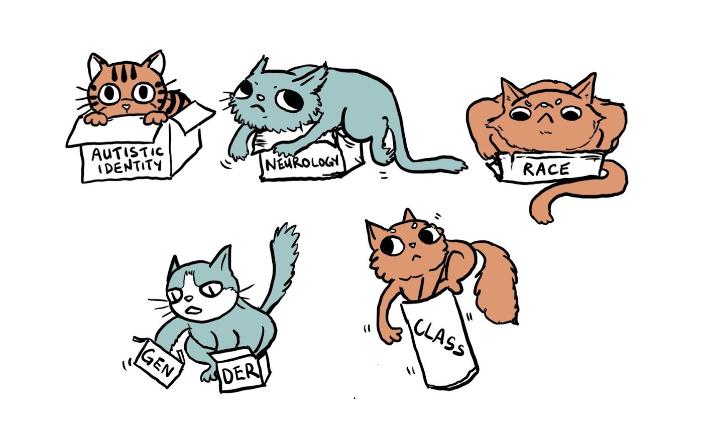Picture: cats trying to fit boxes titled 'autistic identity', 'neurology', 'race', 'gender' and 'class'; not always managing.