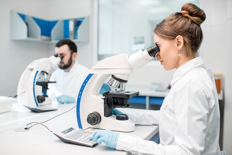 scientists in a laboratory with microscopes
