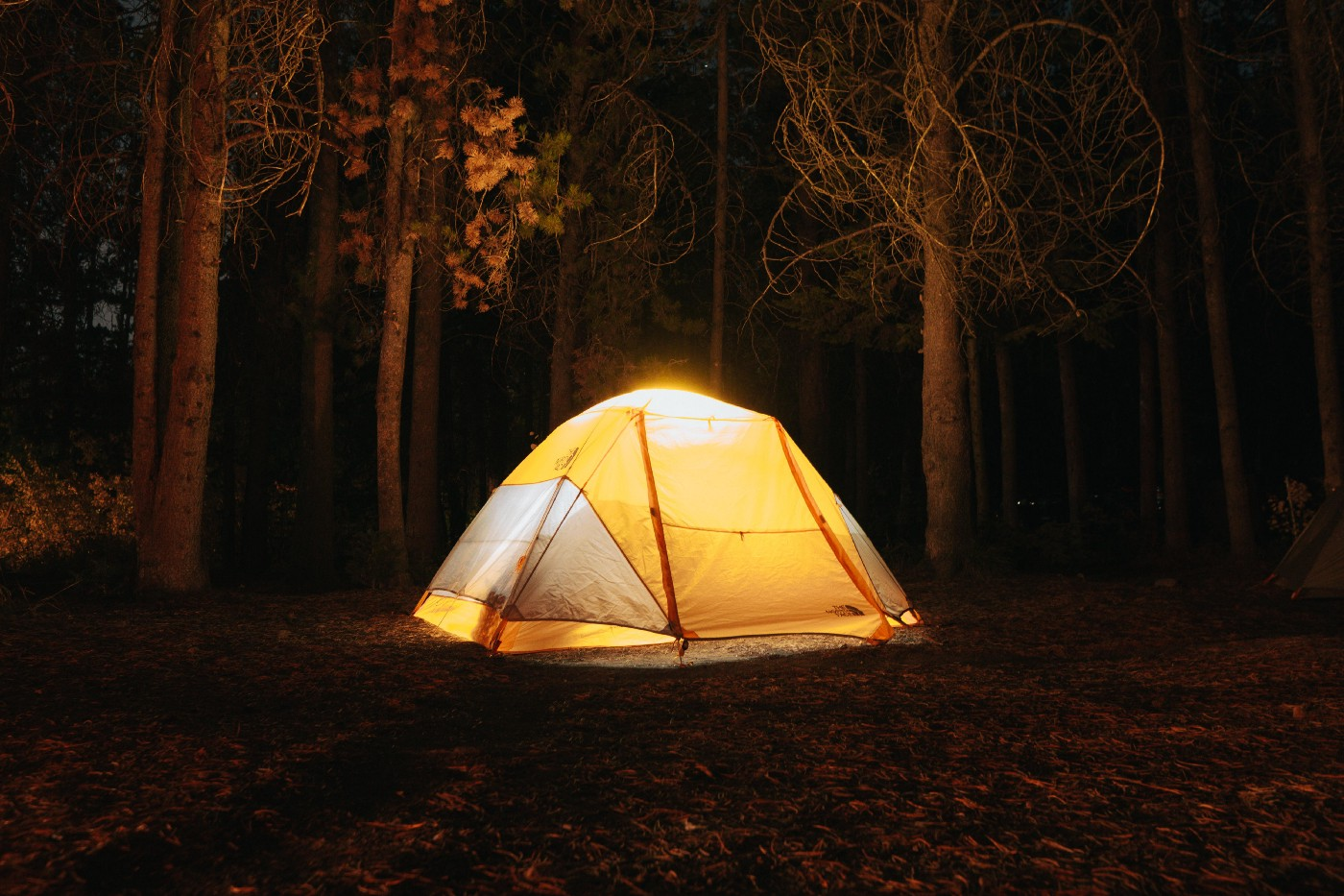 A glowing yellow camp tent in a forest at night
