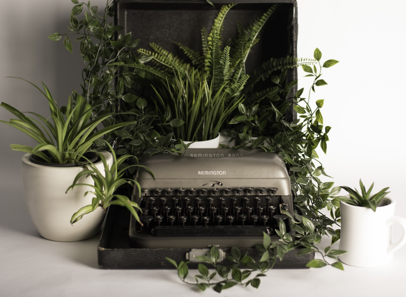 An old typewriter on a desk surrounded by houseplants and vines that are growing all over it