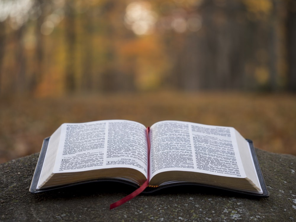The Holy Bible open to the wider world.