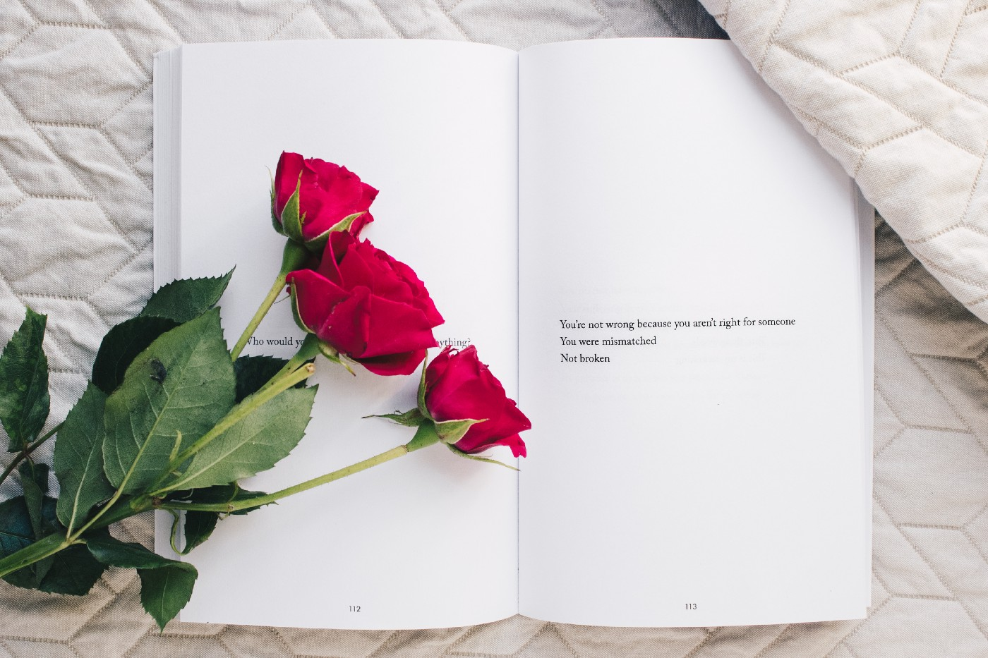 the image is that of a book with white pages nestled with three red roses on it.