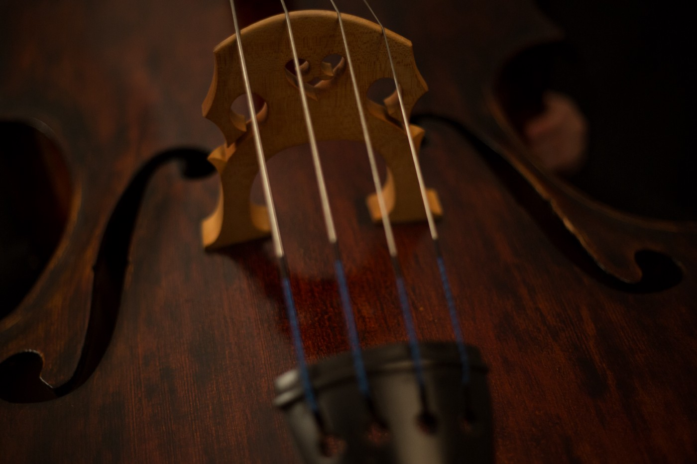 Violas have a smooth, dark tone and often described as being closest to the pitch of a human voice.