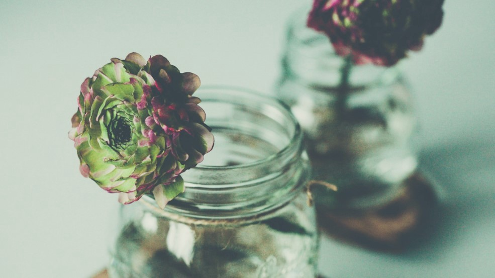 Cut flowers in mason jars of water with reflection