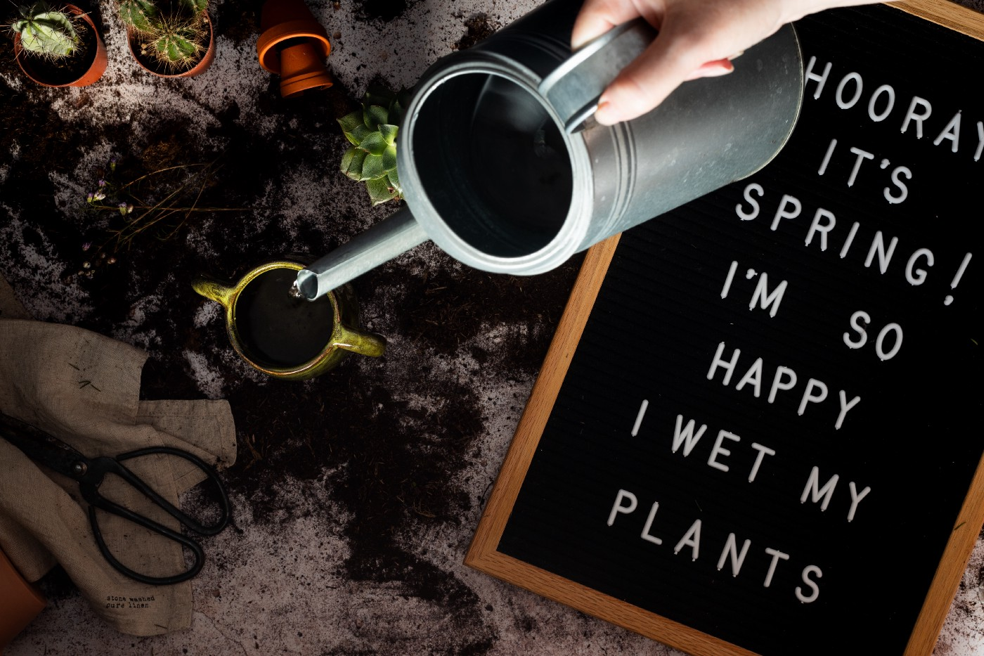 "Watering a plant from a watering can next to a sign that says ""Hooray! It's Spring! I'm so happy I wet my plants"""