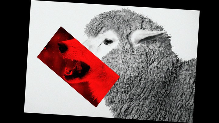 A black-and-white photo of a sheep; a red rectangle containing a wolf's snarling mouth is pasted over the sheep's face.