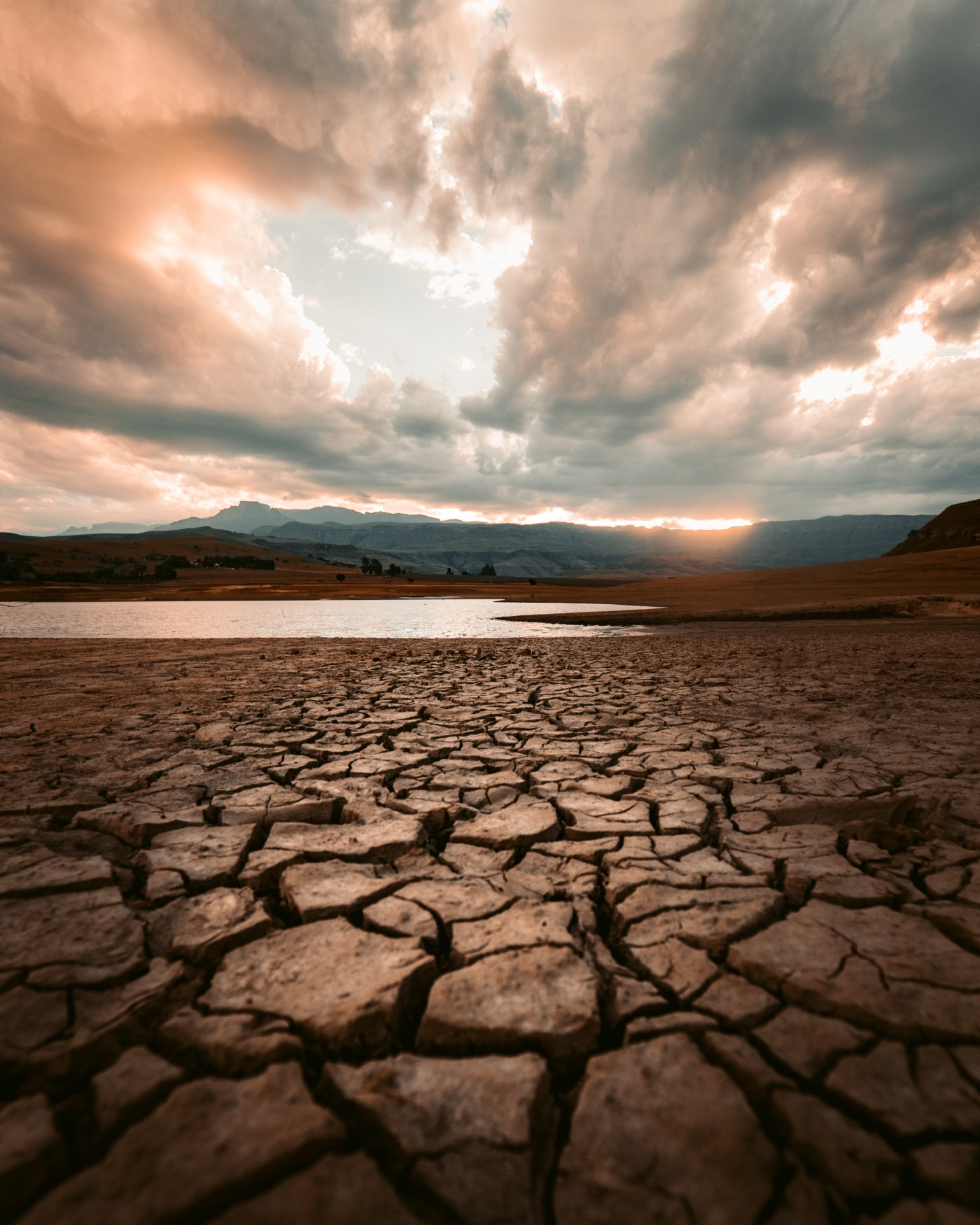 Picture of Exceptional Drought
