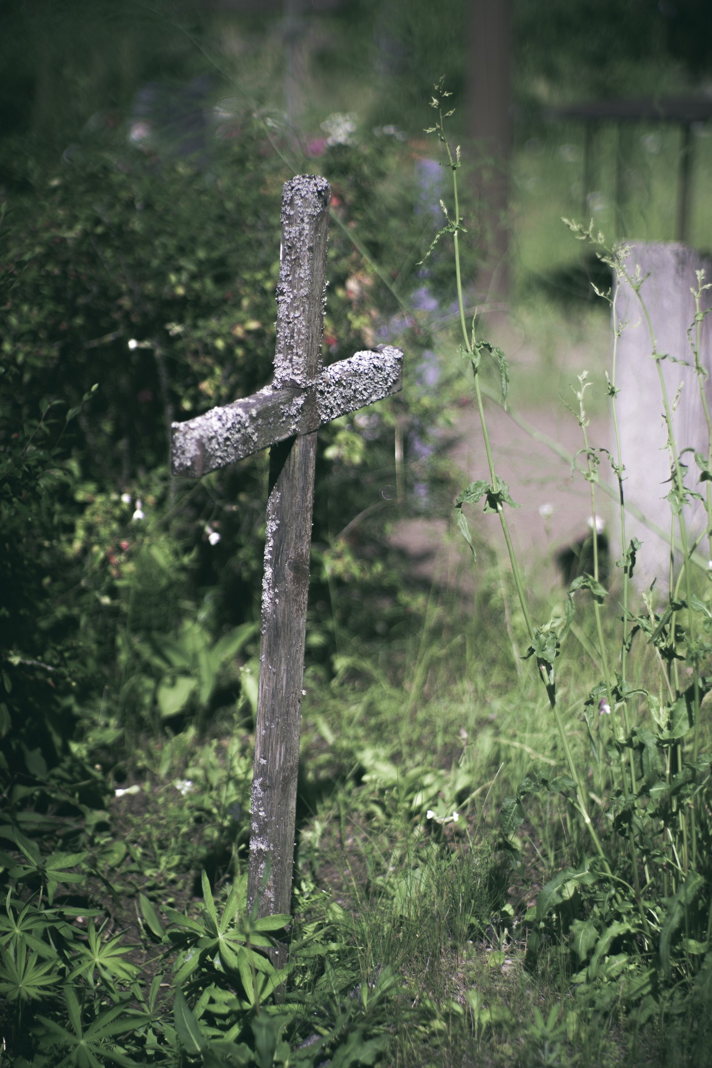 A small wooden cross staked in grass.