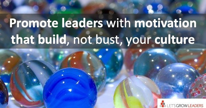 how to promote leaders who build a positive culture