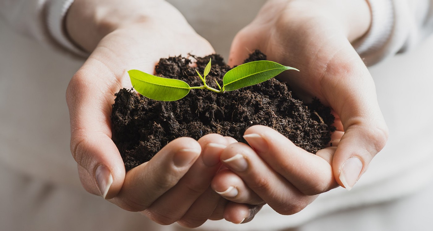 two hands holding soil with a green leaf growing out of it