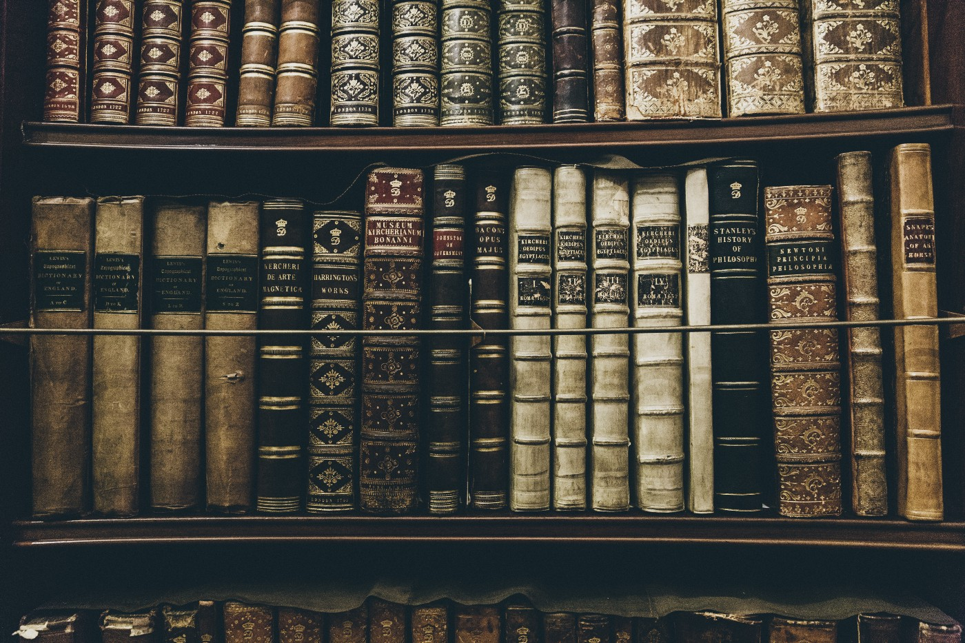 library shelves filled with rare antique books