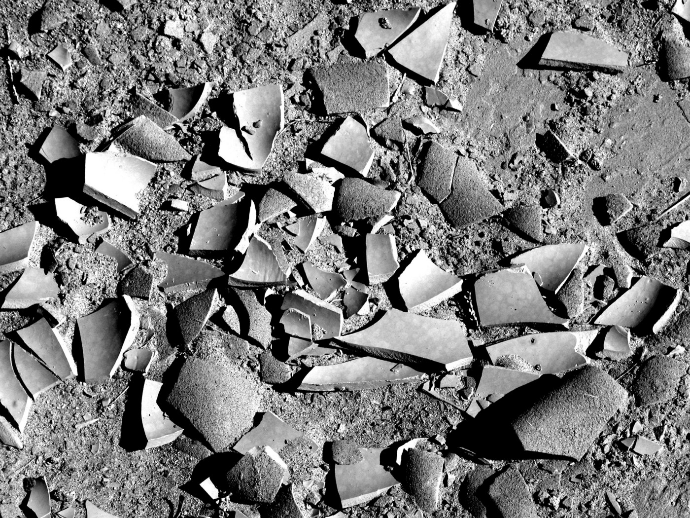 Black and white pottery shards. Fragment by Rena Willis