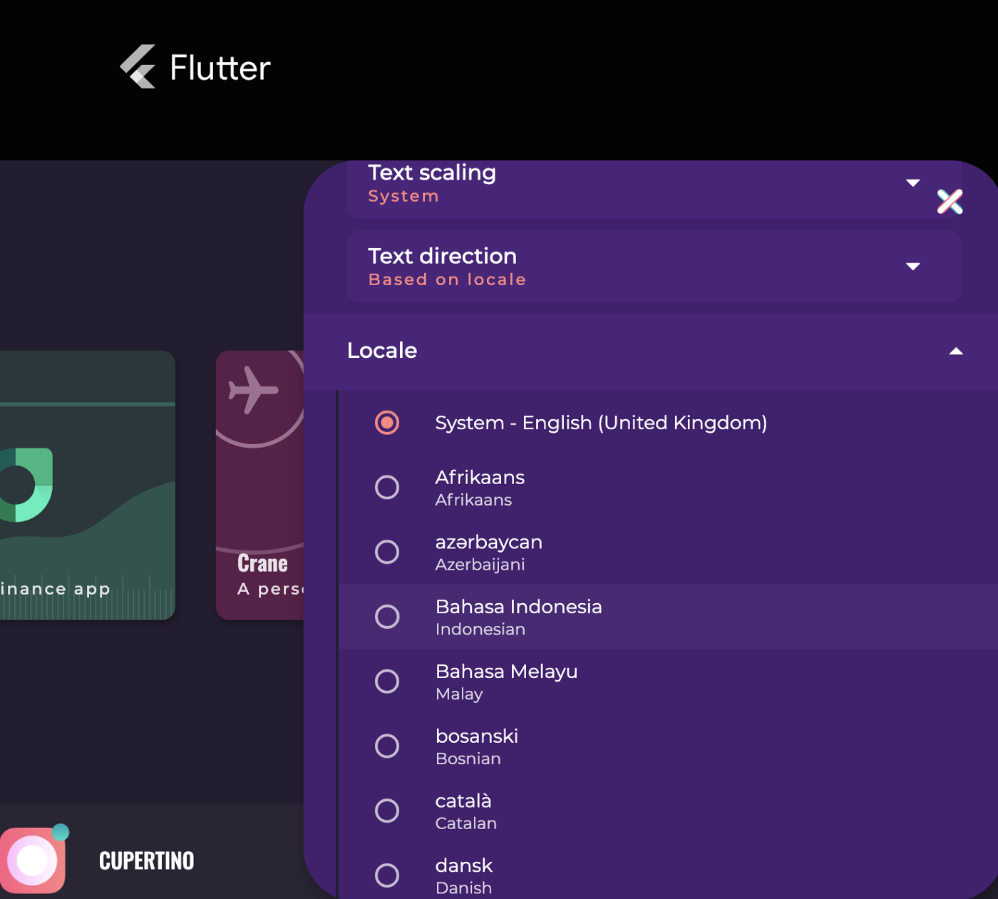 Flutter Gallery settings panel with the locale options expanded