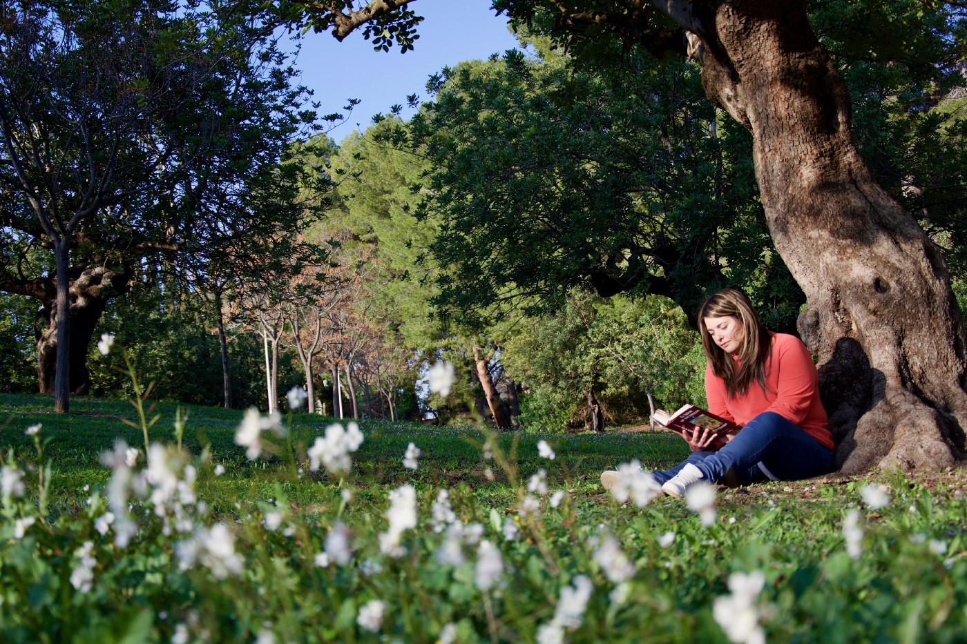 young woman under a tree reading