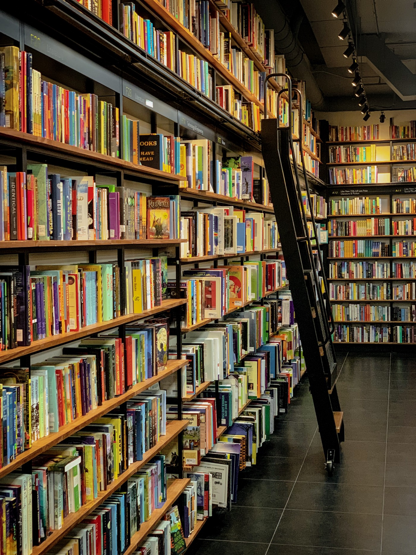 Picture of floor to ceiling bookshelves stocked with books. A ladder leans against a shelf.