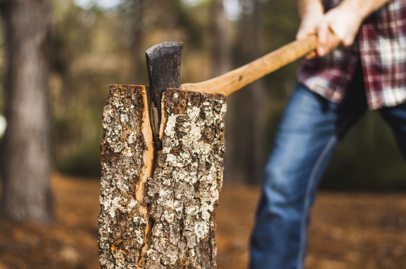 Someone hacking away at a tree stump with an axe
