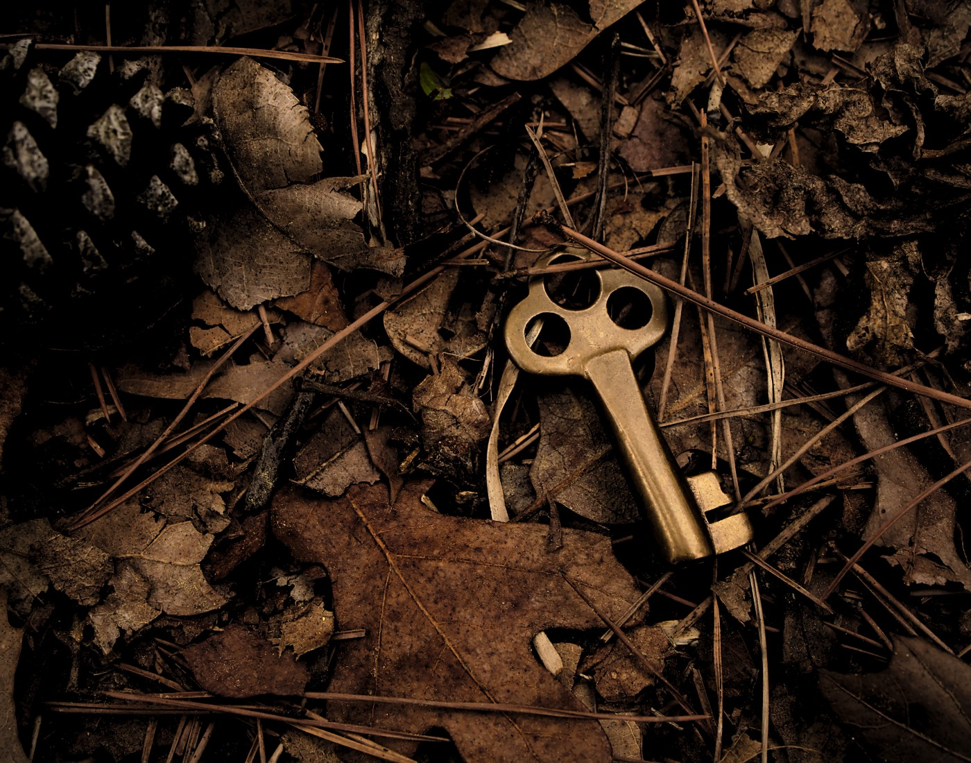 an old key amidst dead leaves. A Snipe Hunt by Rena Willis