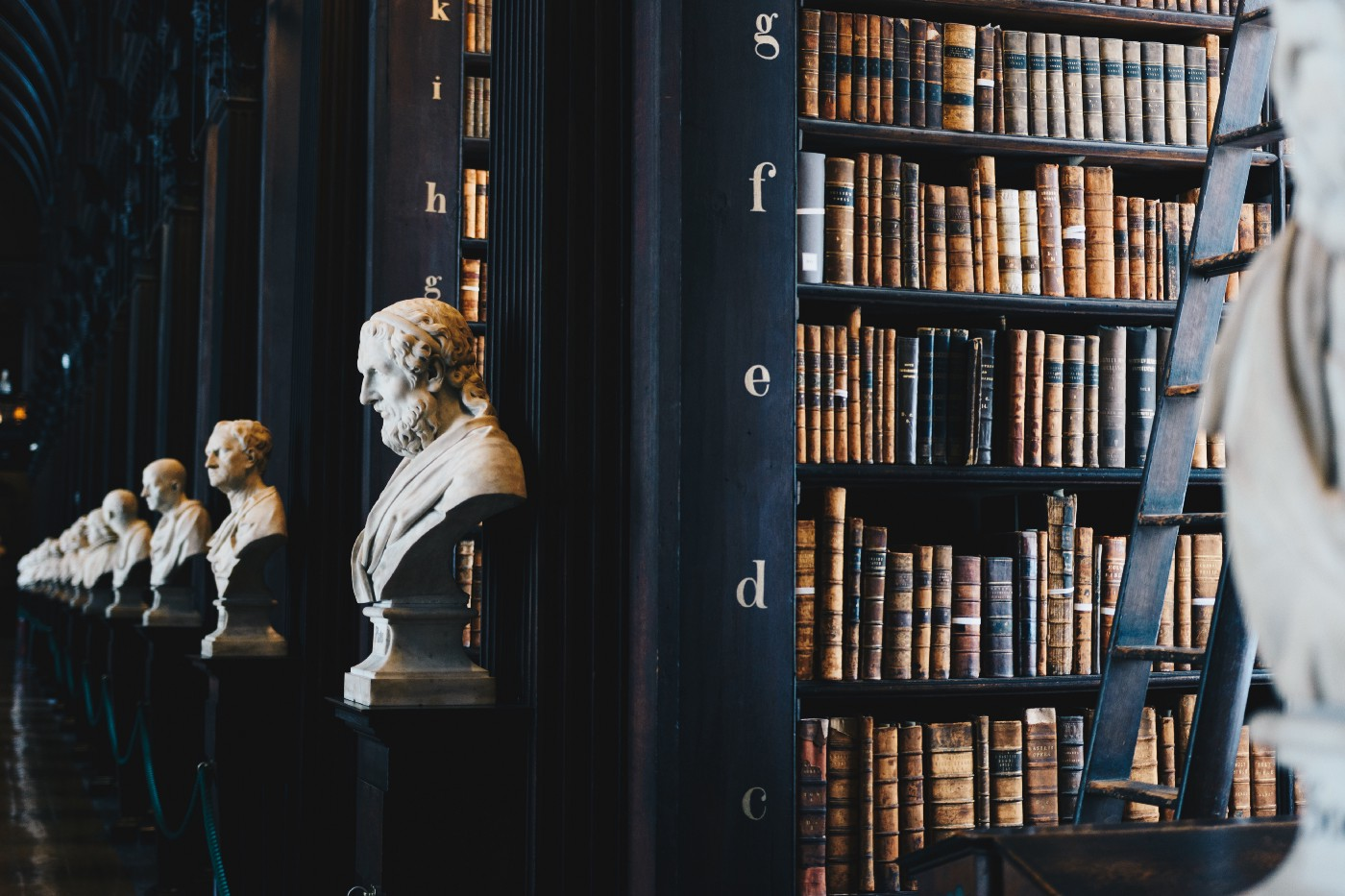 A library hallway with marble busts at the end of each shelving unit
