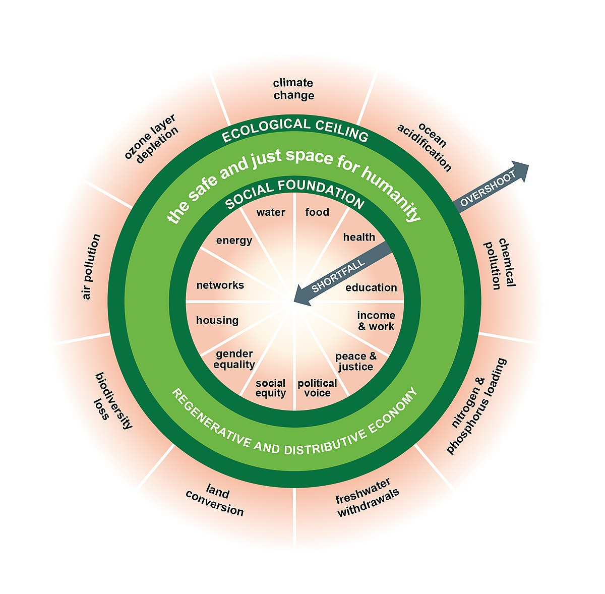 Doughnut Economics I ask therefore I am—How can we eat whatever we want?