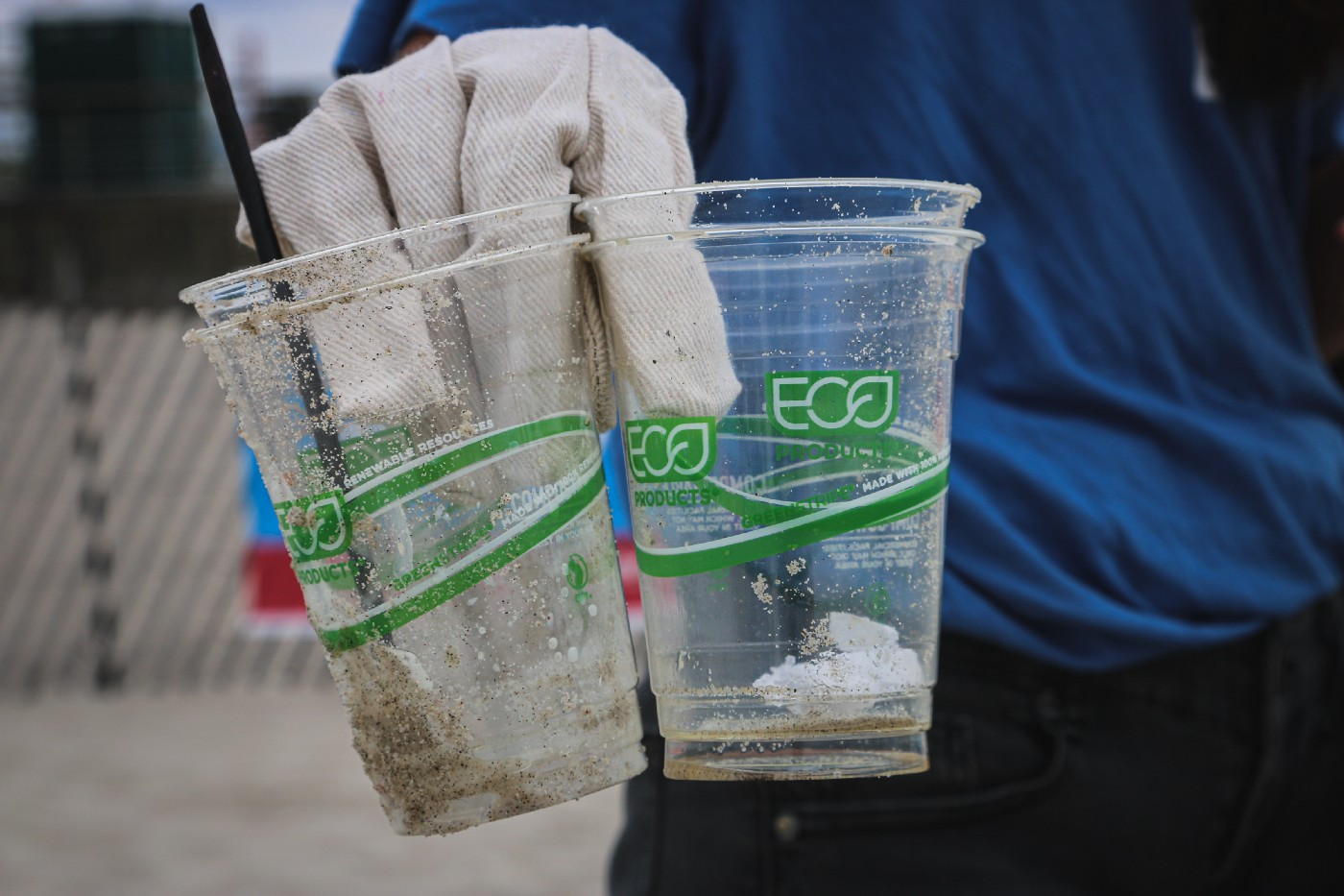 A person wearing plastic medical gloves. They are holding 4 biodegradable, compostable ECO cups. The person is wearing a blue shirt and black pants. They are standing on the beach.