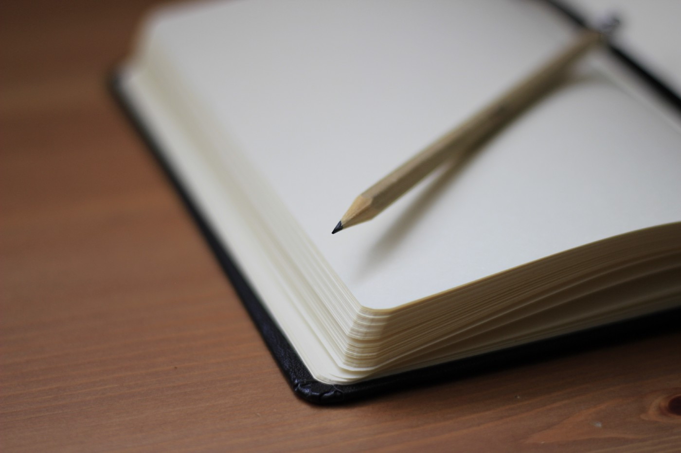 An open notebook with a pencil placed on a blank page.