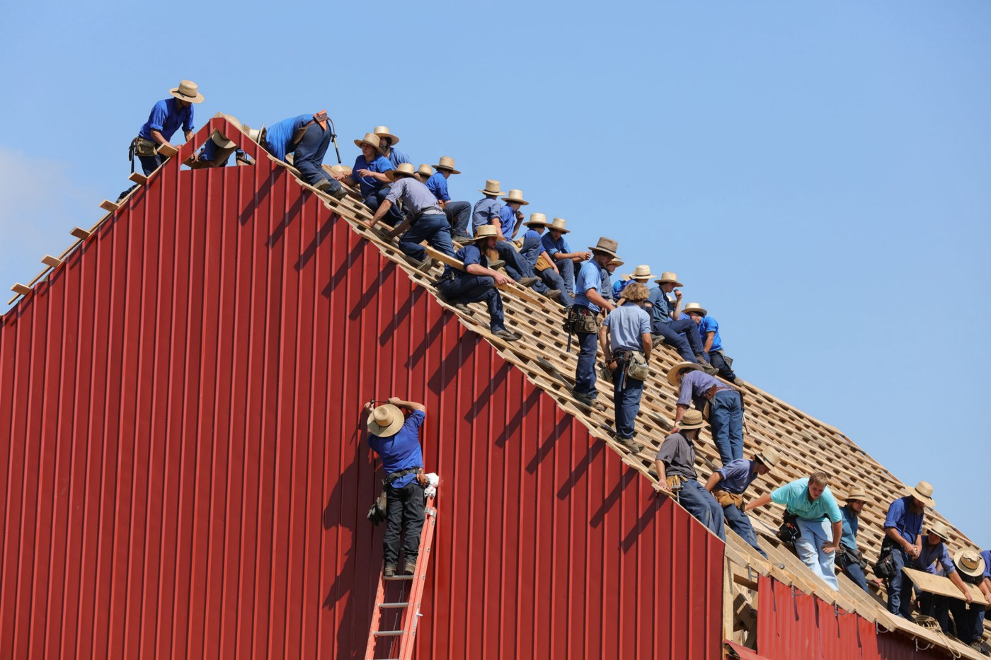 Man on tall ladder and many men roofing a barn