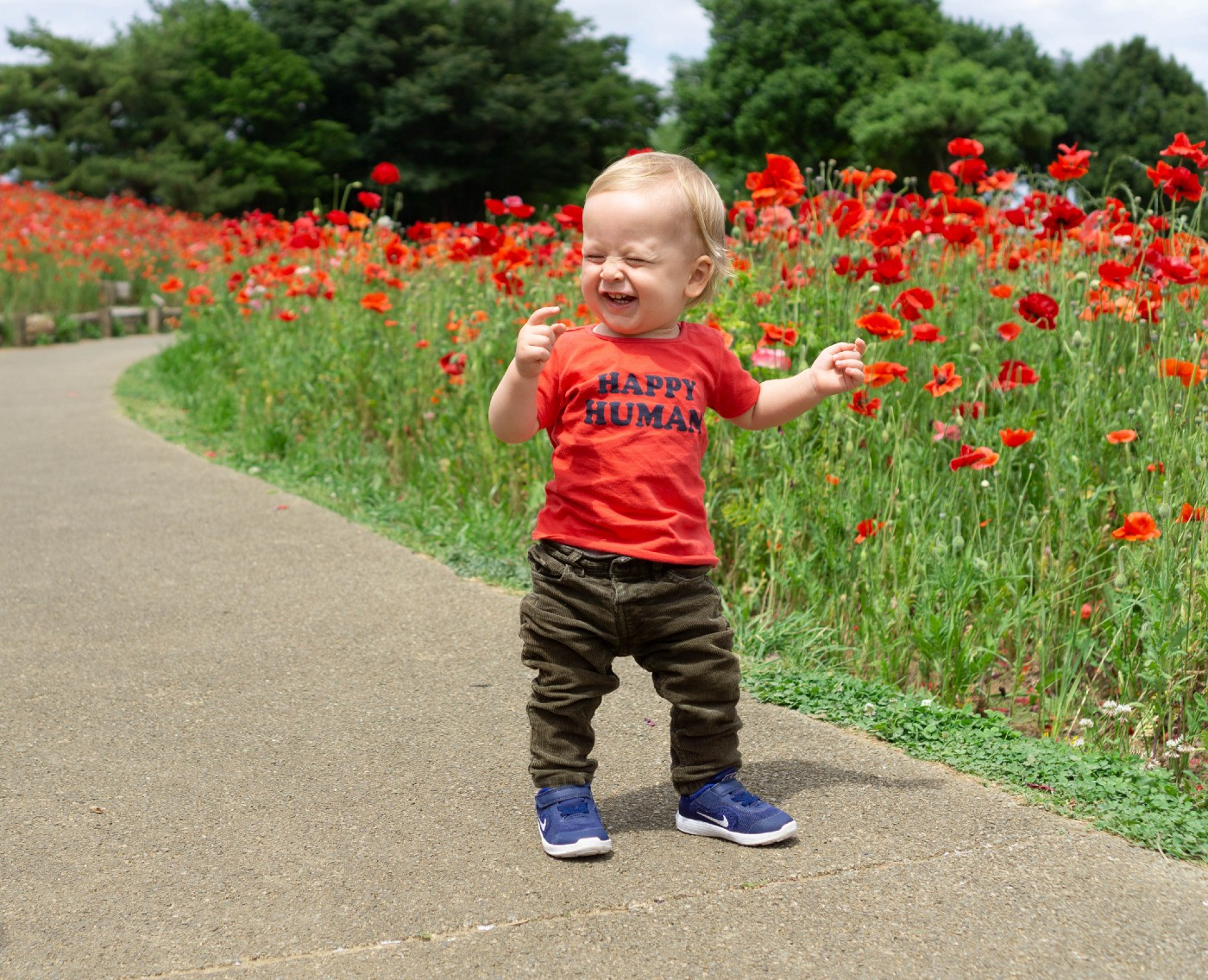 """young toddler with red tee shirt that says """"happy human"""" walking down path between fields of red poppies"""
