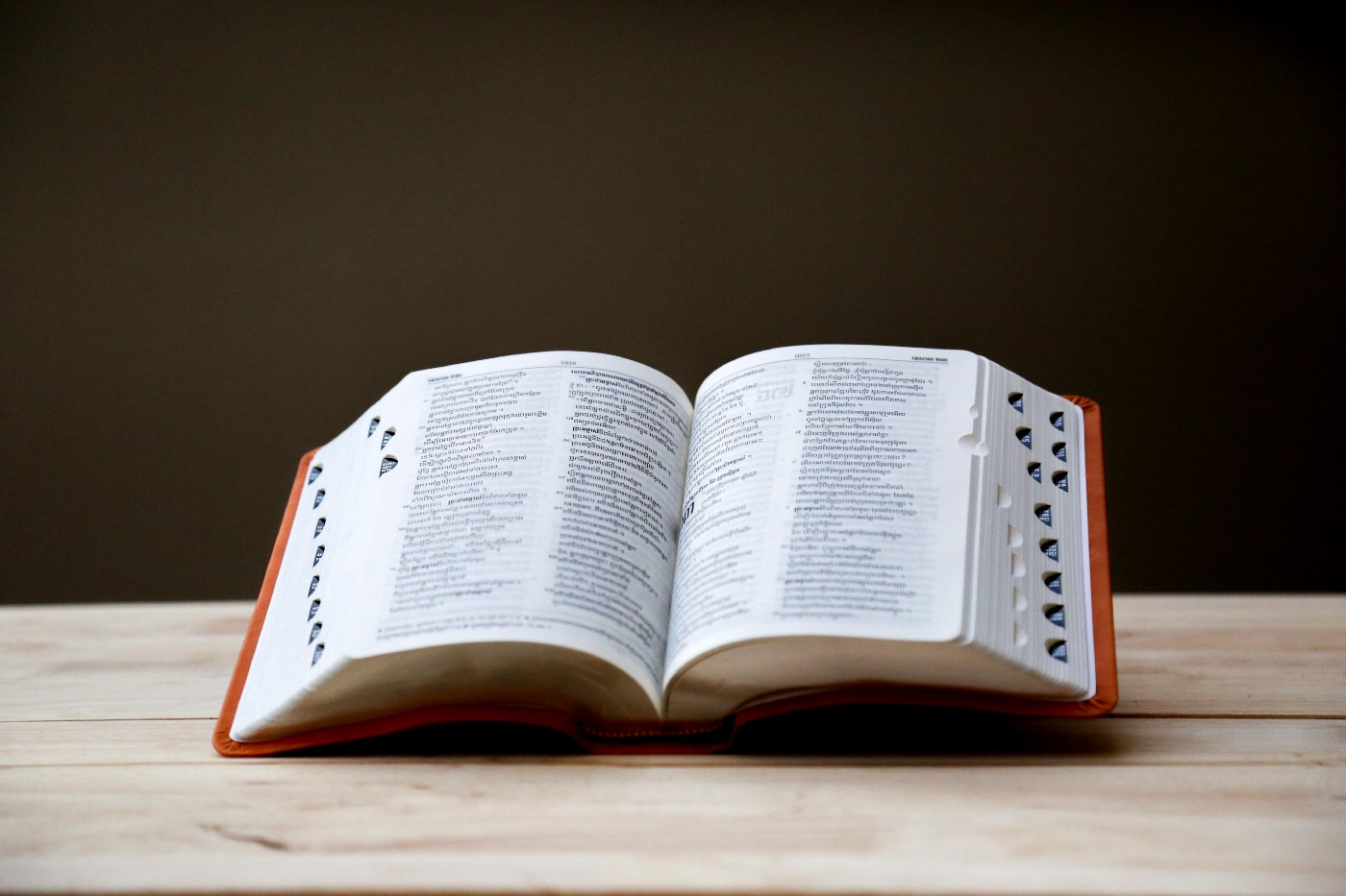 An open dictionary sits on a wooden table